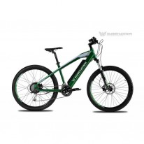SMART MOTION CATALYST GREEN 21AH