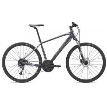 2019 GIANT ROAM 2 DISC