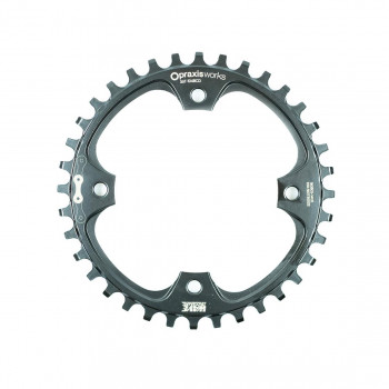 Praxis E-Bike Steel Wave 1x 104BCD Chainring